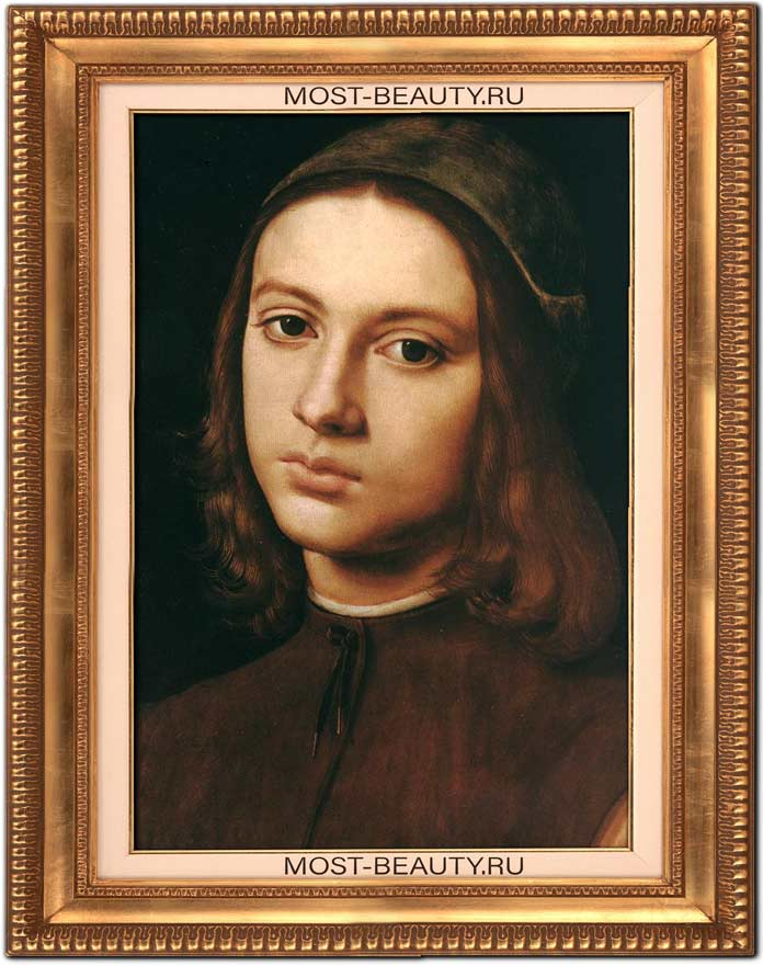 Картины Перуджино: Портрет юноши (1480)