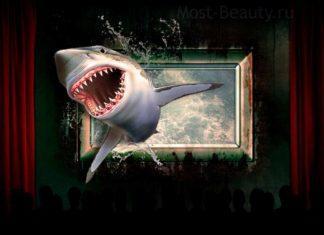 Фильмы про акул. CC0