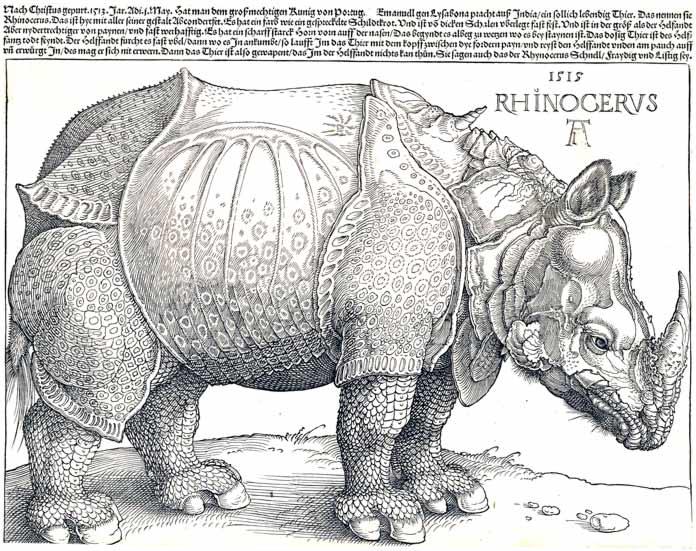 Носорог (1515)