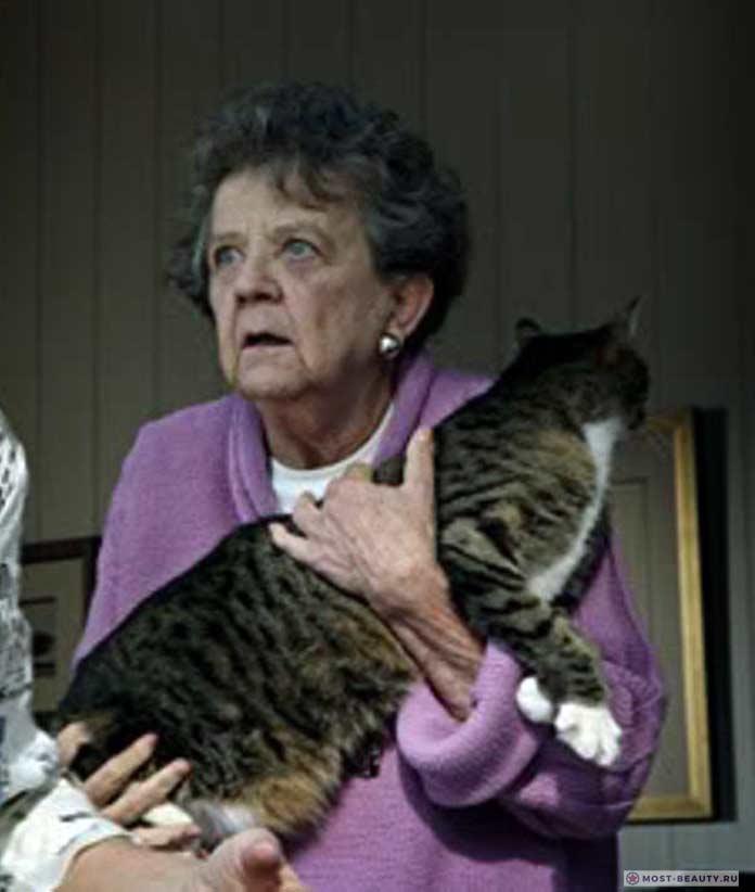 Актрисы сериала «Отчаянные домохозяйки»: Пэт Кроуфорд Браун