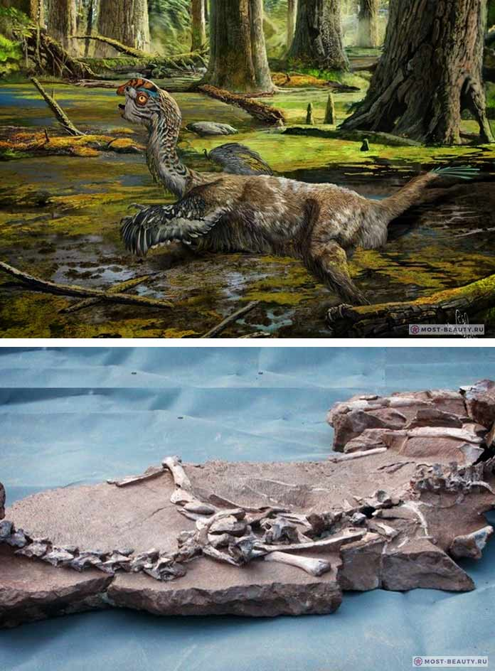 Окаменелости динозавров: Динозавр застрял в грязи