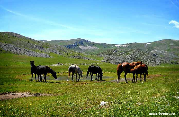 Парк Маврово - одно из лучших приключений Македонии под открытым небом