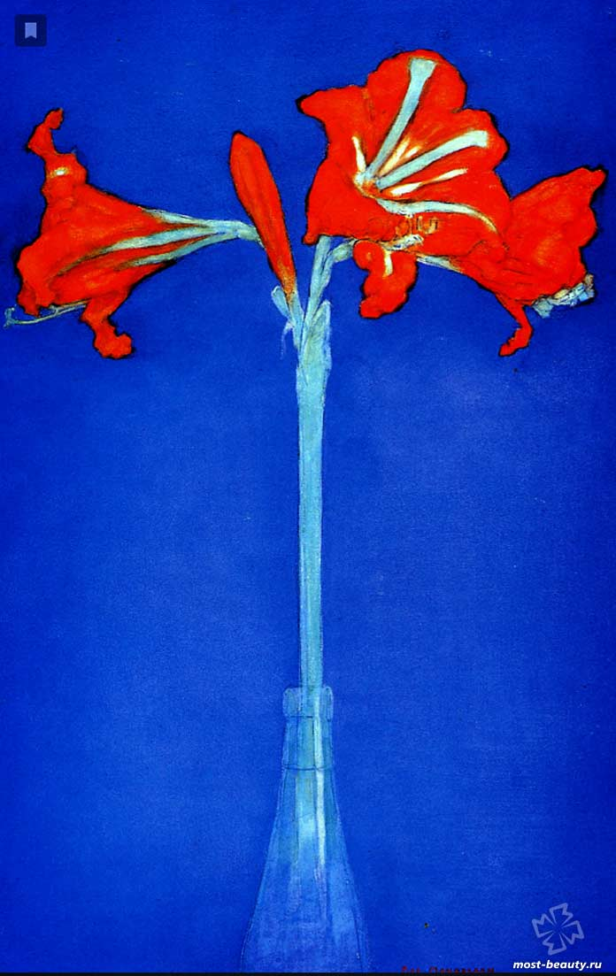 Популярные картины Пита Мондриана: Амариллис