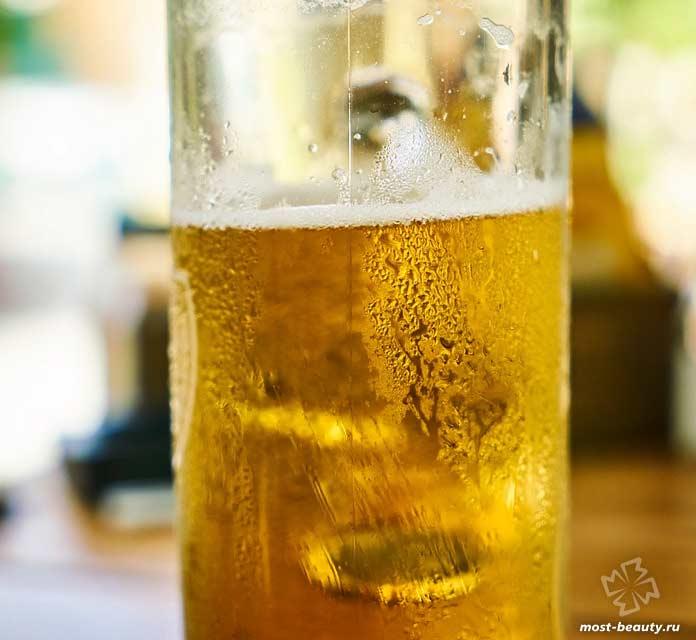 Основные сорта пива: Эль. CC0