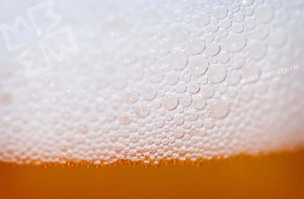 Основные сорта пива. CC0