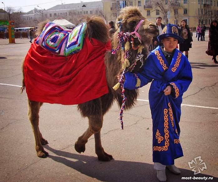 Казахи. CC0