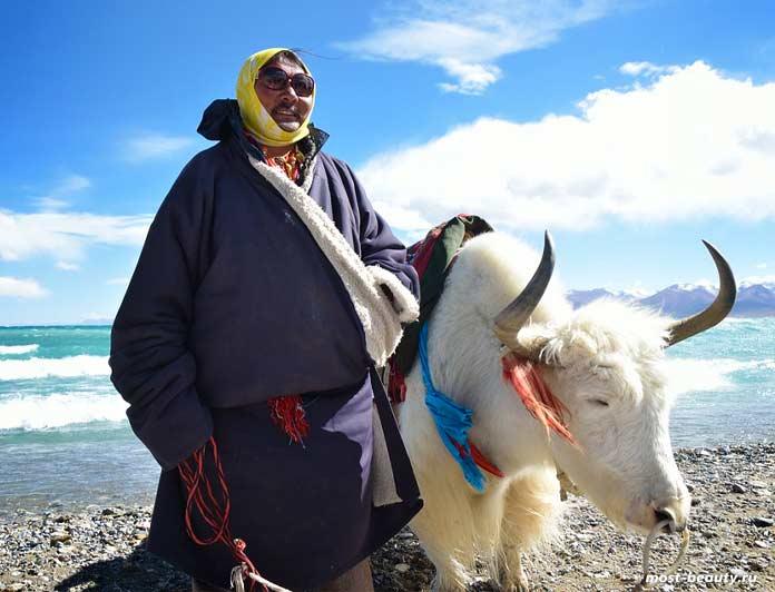 Современные кочевые народы: Тибетцы. CC0