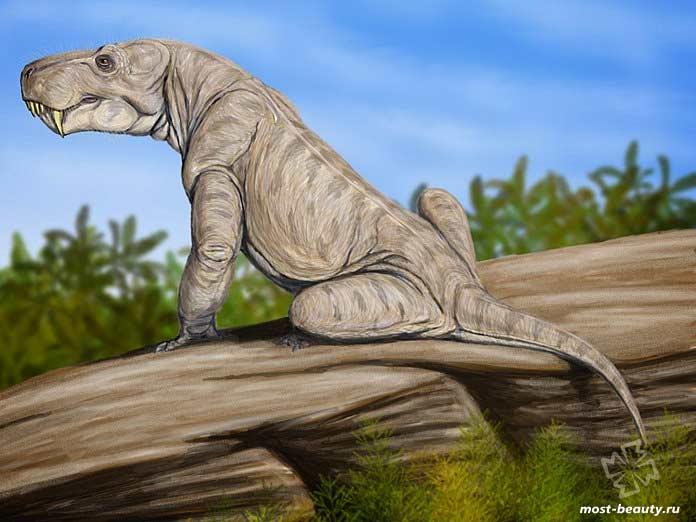 Доисторические животные: Горгонопс