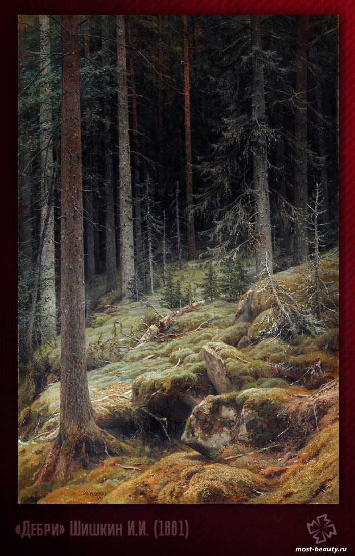 Картины Третьяковской галереи: «Дебри» Шишкин И.И. (1881)