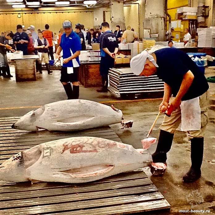 Исчезнувшие туристические направления: Аукцион тунца. CC0