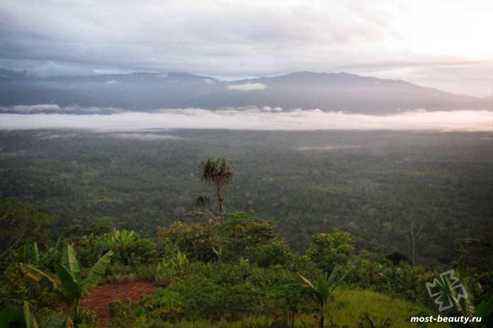 Тропа Кокода