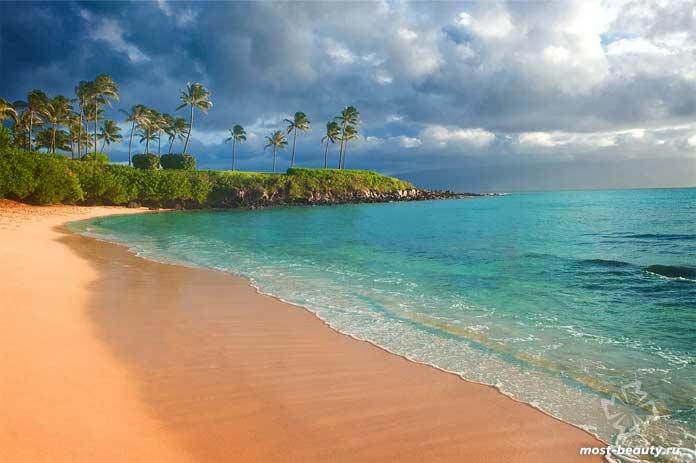 Тропический пляж. CC0