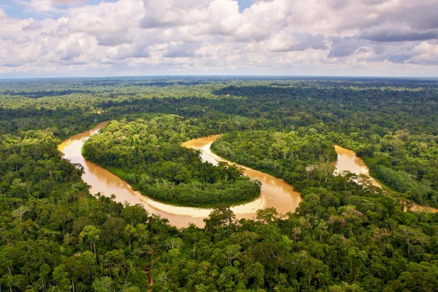 Тропические леса Амазонки легкие Земли