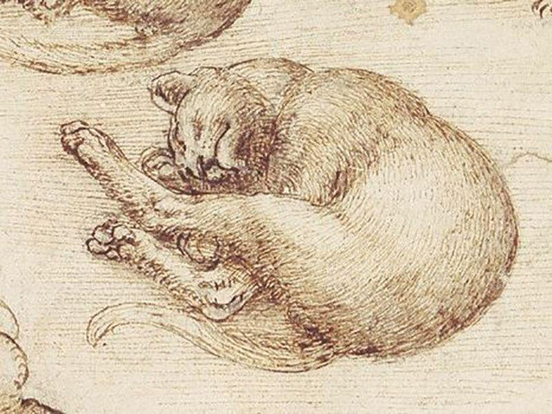 Леонардо да Винчи было жалко животных