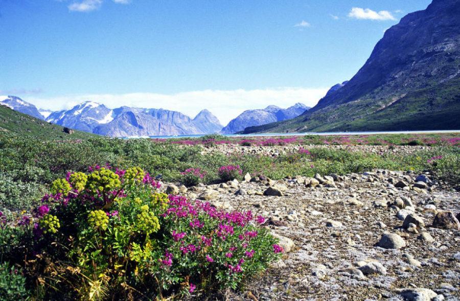 Гренландский национальный парк